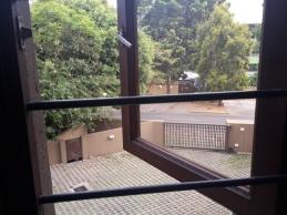 Blick aus meinem Fenster auf das Eingangtor
